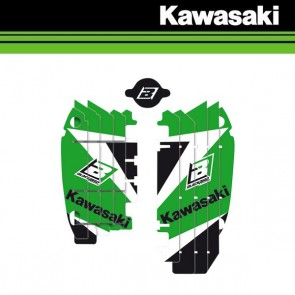 BLACKBIRD DREAM 3 LOUVER STICKERS - KAWASAKI